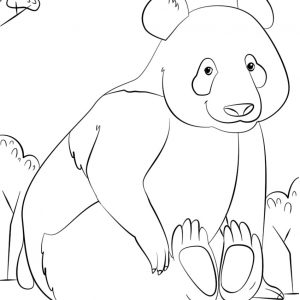 300x300 Cute Panda Coloring Pages To Copy