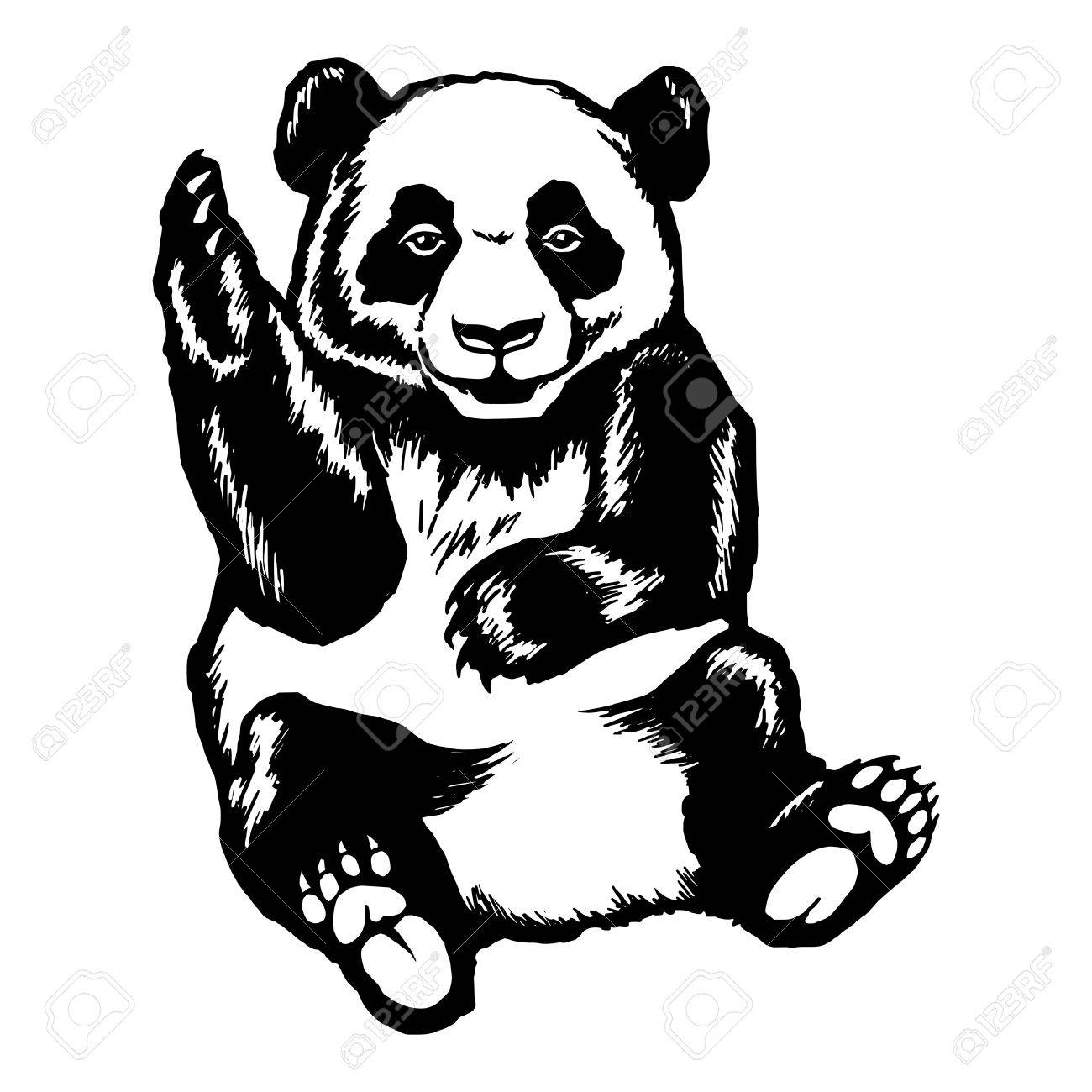 1300x1300 Hand Drawn Vector Sketch Silhouette Linear Illustration Of Panda