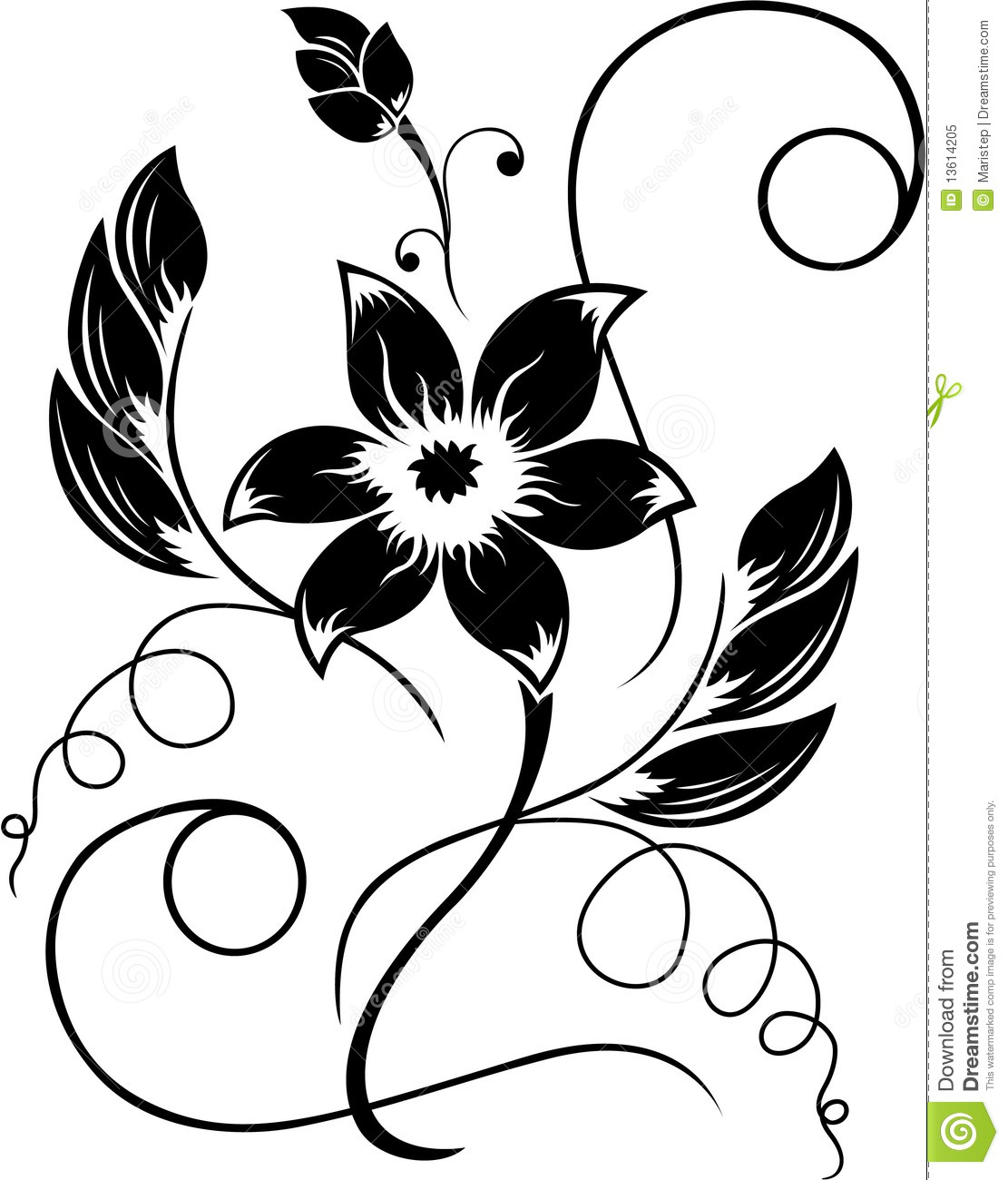 1111x1300 Black White Flower Drawings