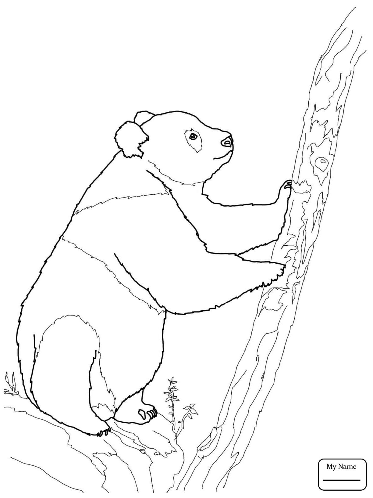 1224x1632 Coloring Pages Cute Panda Family Mammals