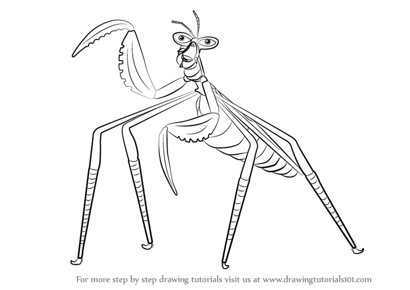 800x566 Step By Step How To Draw Mantis From Kung Fu Panda 3