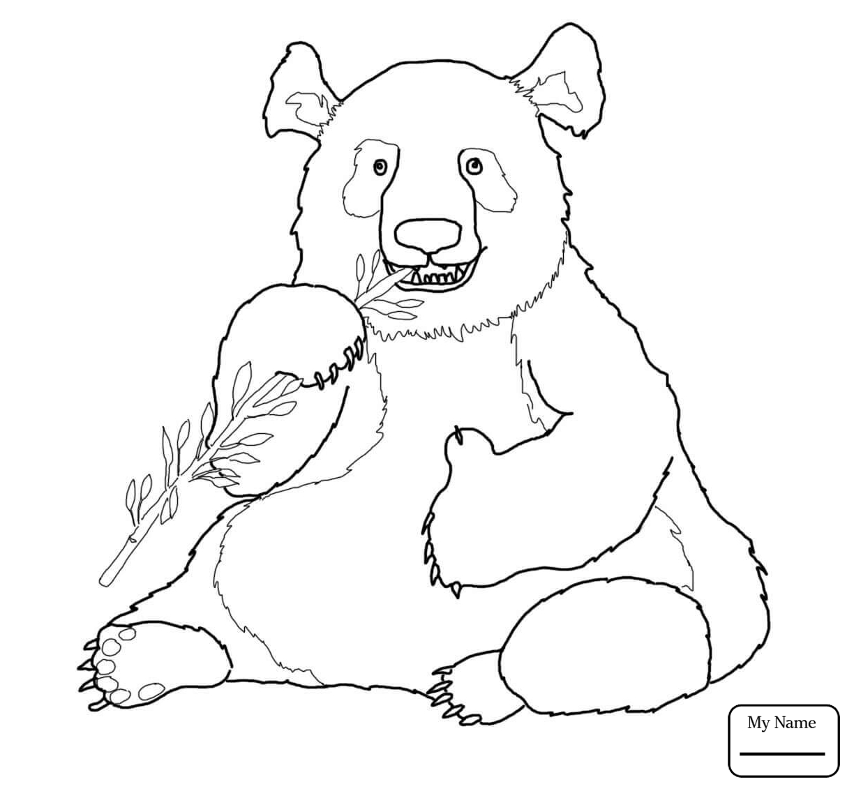 1224x1134 Coloring Pages For Kids Giant Panda Giant Panda Eats Bamboo