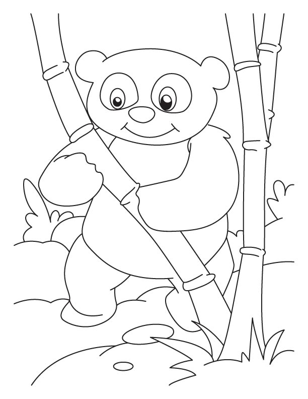 Panda With Bamboo Drawing at GetDrawings | Free download