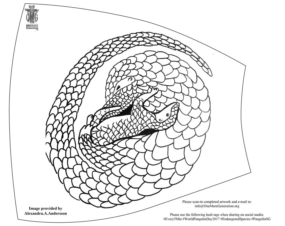999x794 Global Pangolin Awareness Art Campaign One More Generation