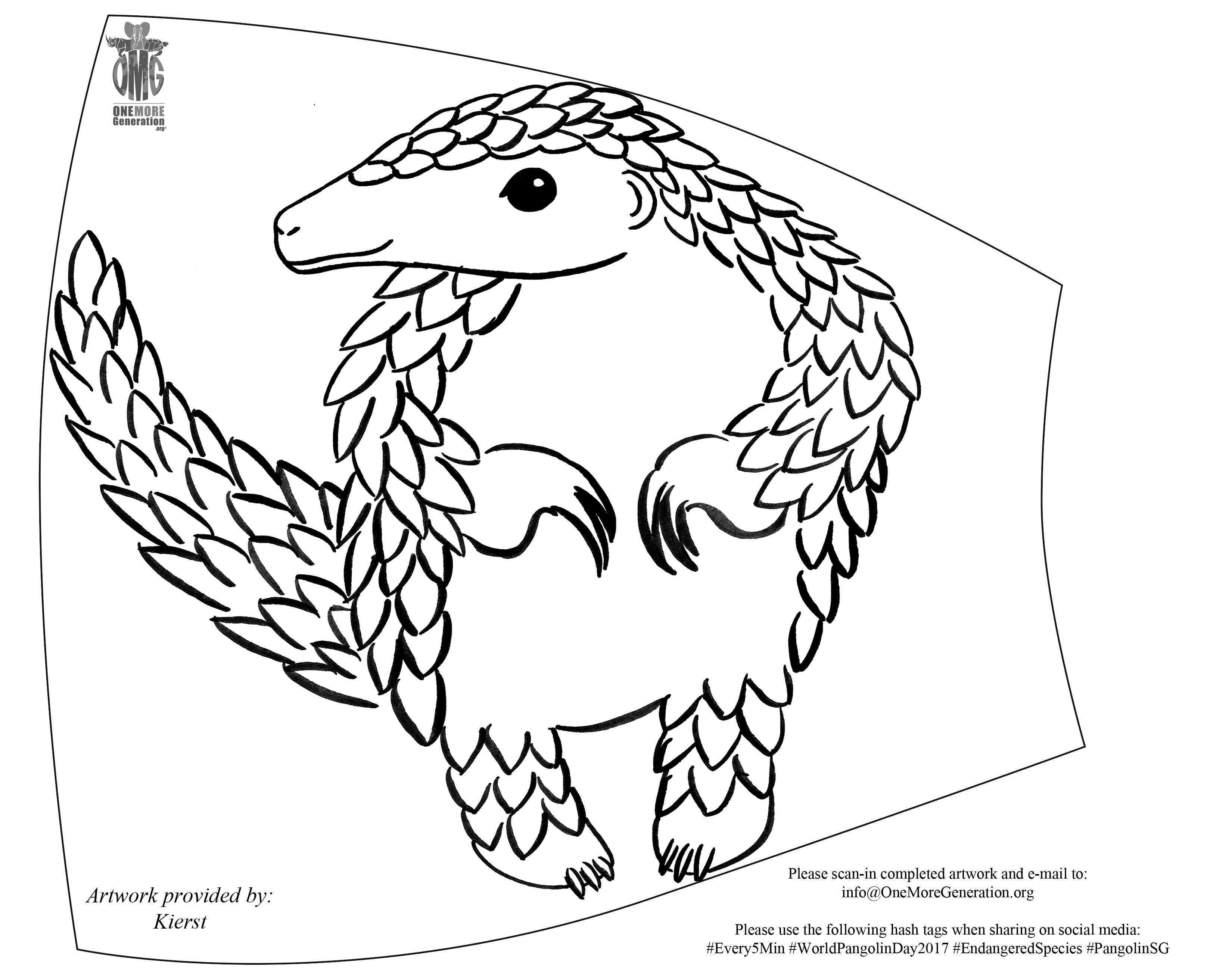 3300x2622 Pangolin Conservation Shaldon Zoo Shaldon Wildlife Trust