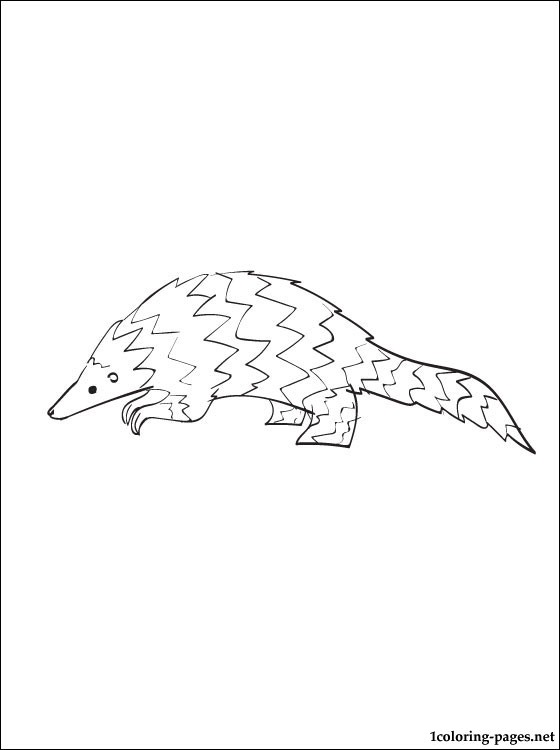 560x750 Pangolin Coloring Page Coloring Pages