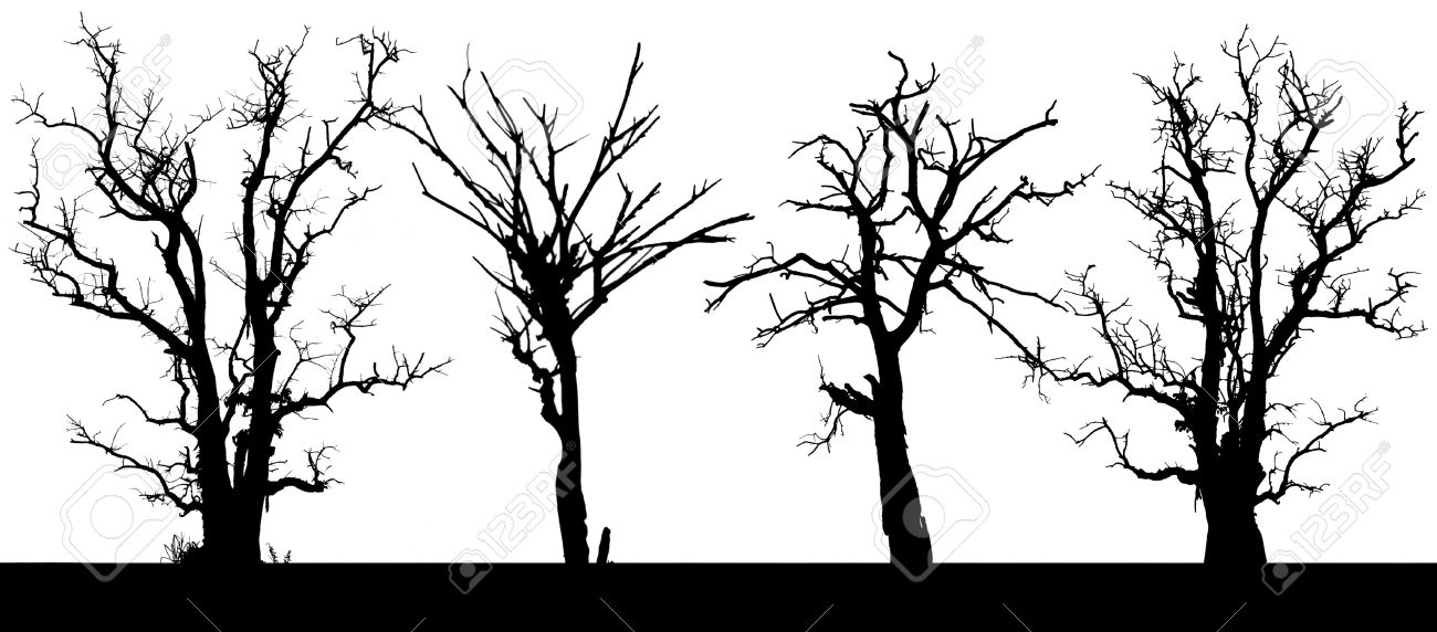 1300x572 15113990 Panorama Silhouette Of A Dead Tree In Four Isolates