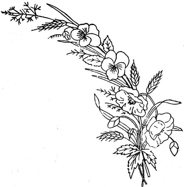 Pansies Drawing