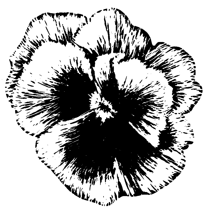 870x900 Filepansy (Psf).png