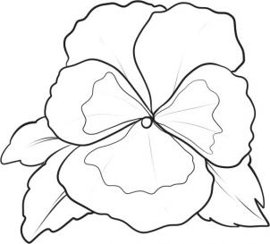 302x273 How To Draw A Pansy Step 5 Tattoo Ideas Drawings