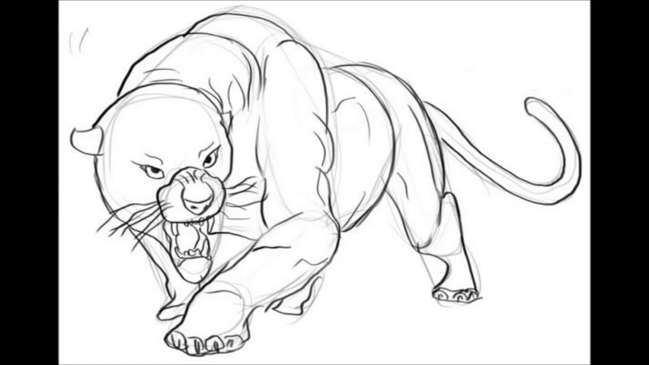 1280x720 How To Draw A Panther