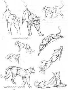 236x309 Resultado De Imagen Para Panther Drawings Sketches Art Stuff