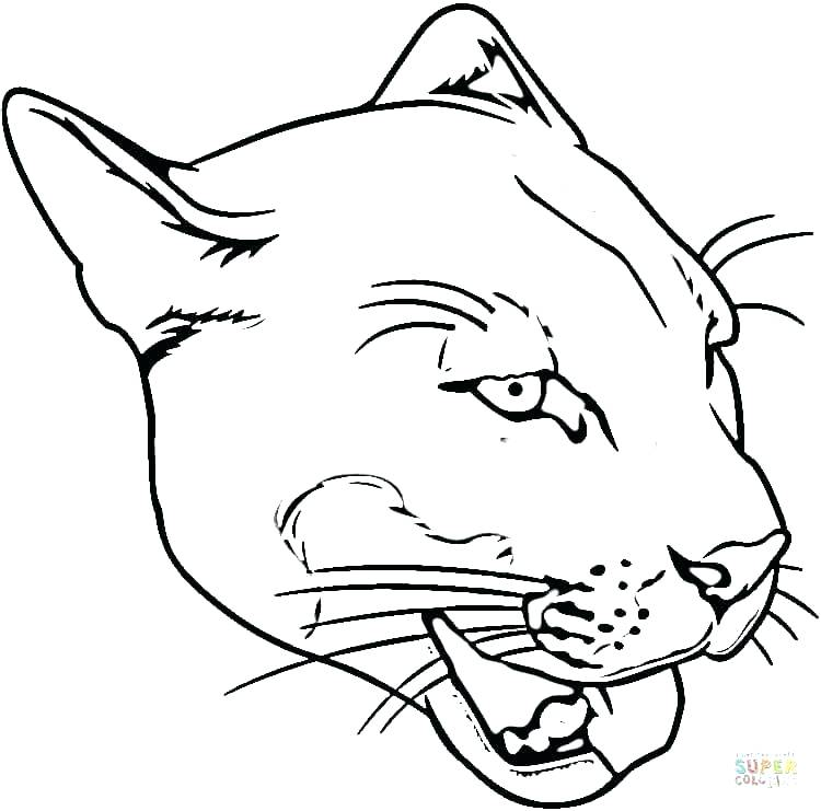 750x741 Panther Animal Coloring Pages Black Panther Coloring Pictures Page