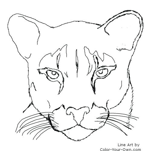 500x500 Panther Coloring Pages Index Coloring Pages Black Panther Coloring