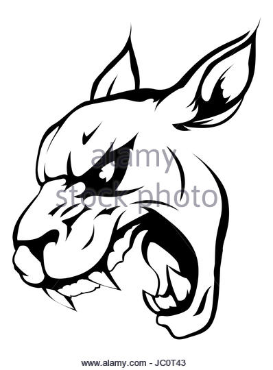 398x540 Black Panther Snarling Stock Photos Amp Black Panther Snarling Stock
