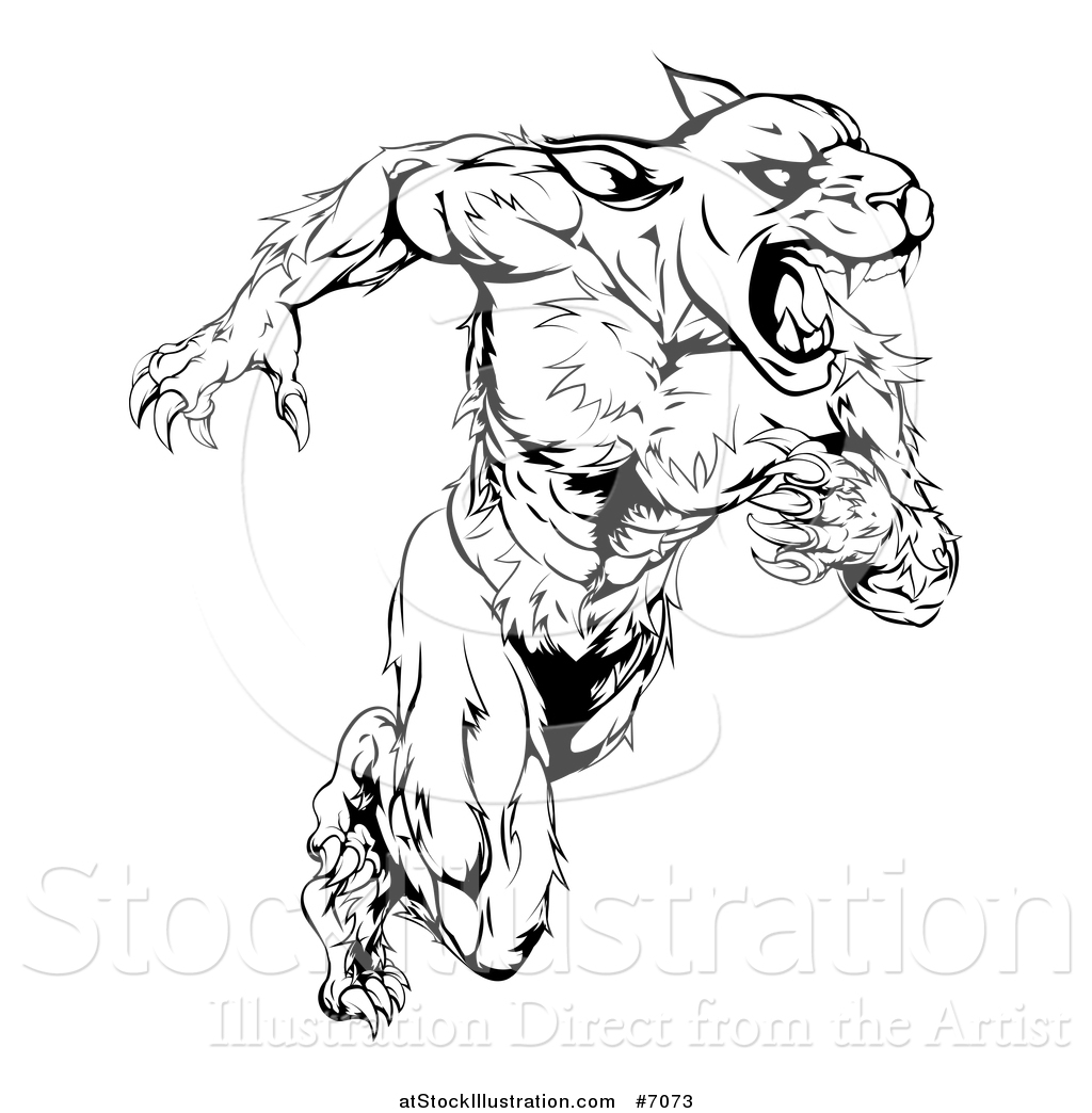 Panther Head Drawing at GetDrawings | Free download