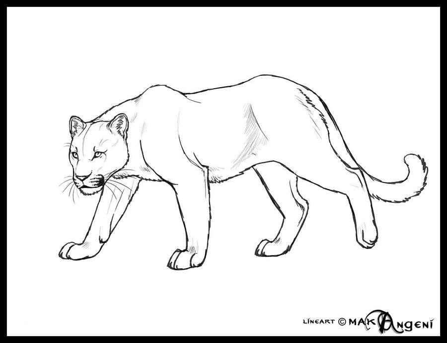 900x692 Free Lineart Feline By Makangeni