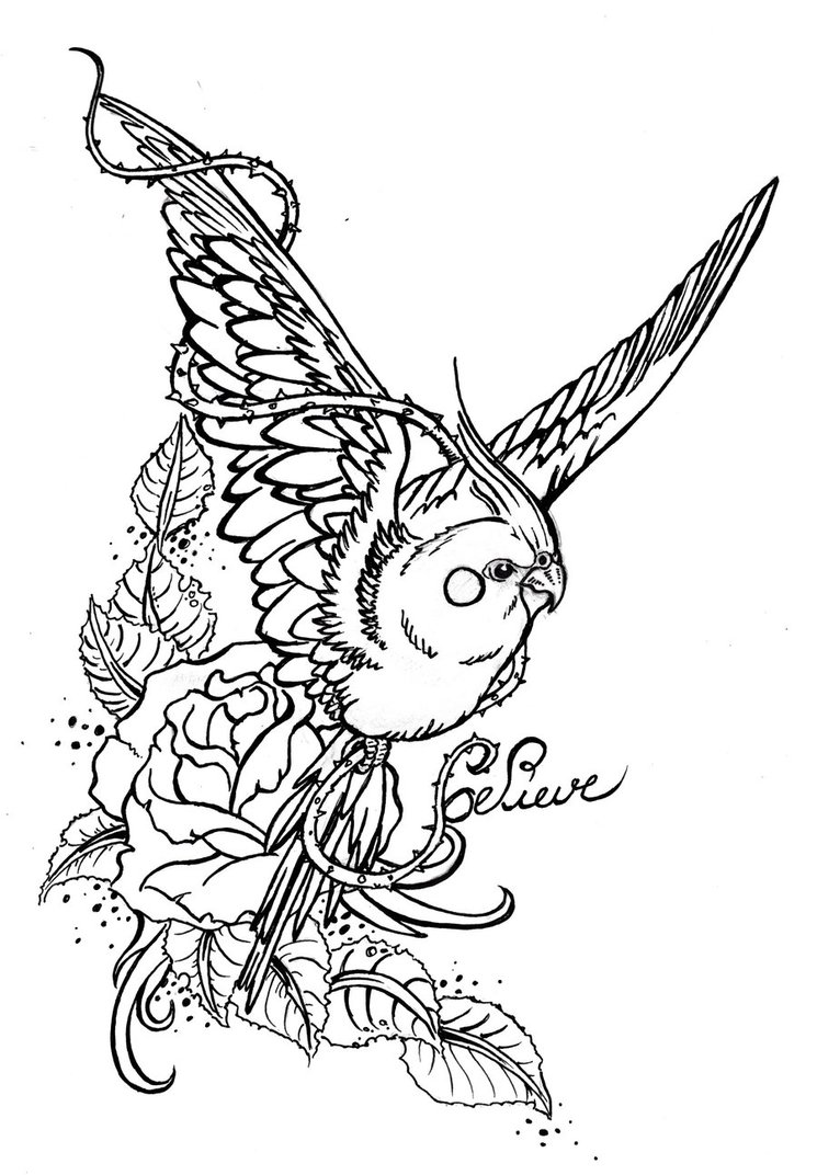 745x1072 Parakeet Tatoo Draw By Cawoohh21