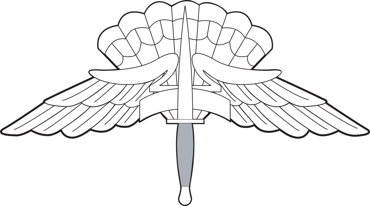 1200x667 Military Freefall Parachutist Badge