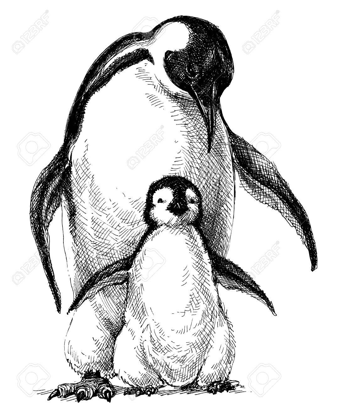 1080x1300 Penguins Family. Cute Baby Penguin And Parent Drawing Isolated