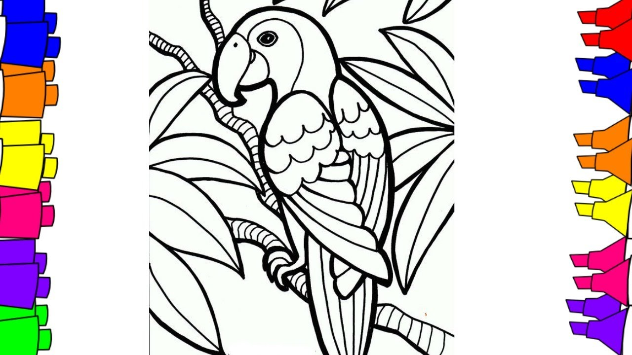 1280x720 how to draw step by step bird coloring pages for kids parrot - Bird Coloring