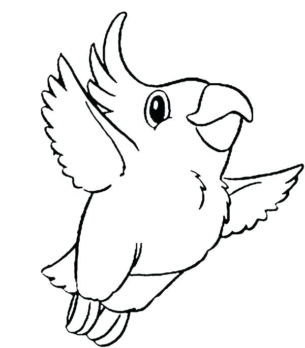 600x686 Parrot Coloring Tourist With Parrot Pirate Parrot Coloring Sheet