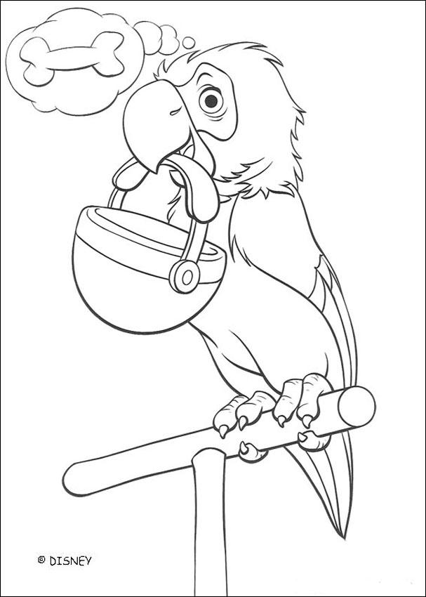 607x850 Parrot Coloring Pages, Drawing For Kids, Videos For Kids, Kids