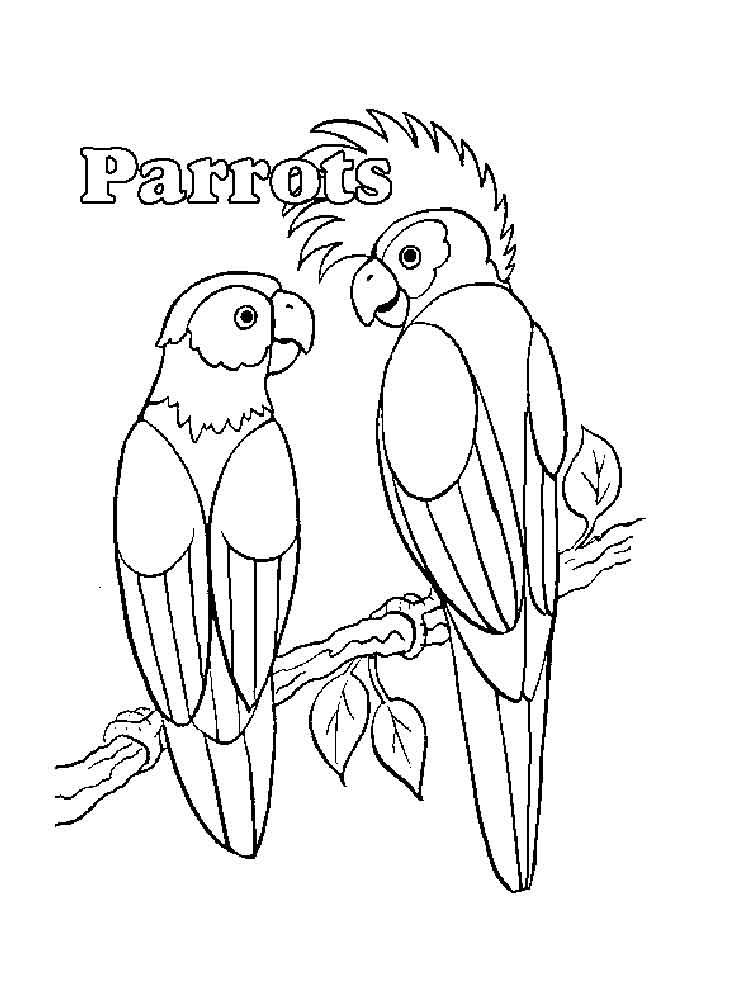 750x1000 Parrot Coloring Pages. Download And Print Parrot Coloring Pages