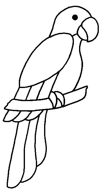 Parrot Drawing Outline
