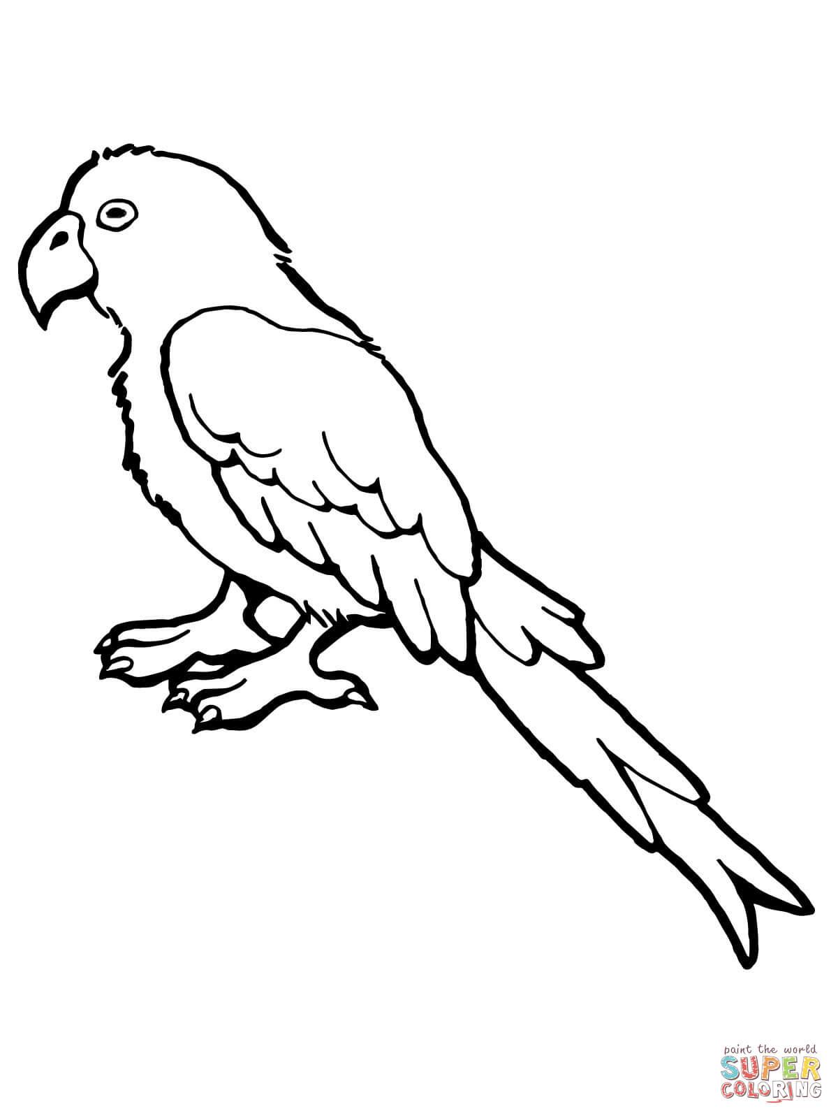 1200x1600 Parrot Bird Outline