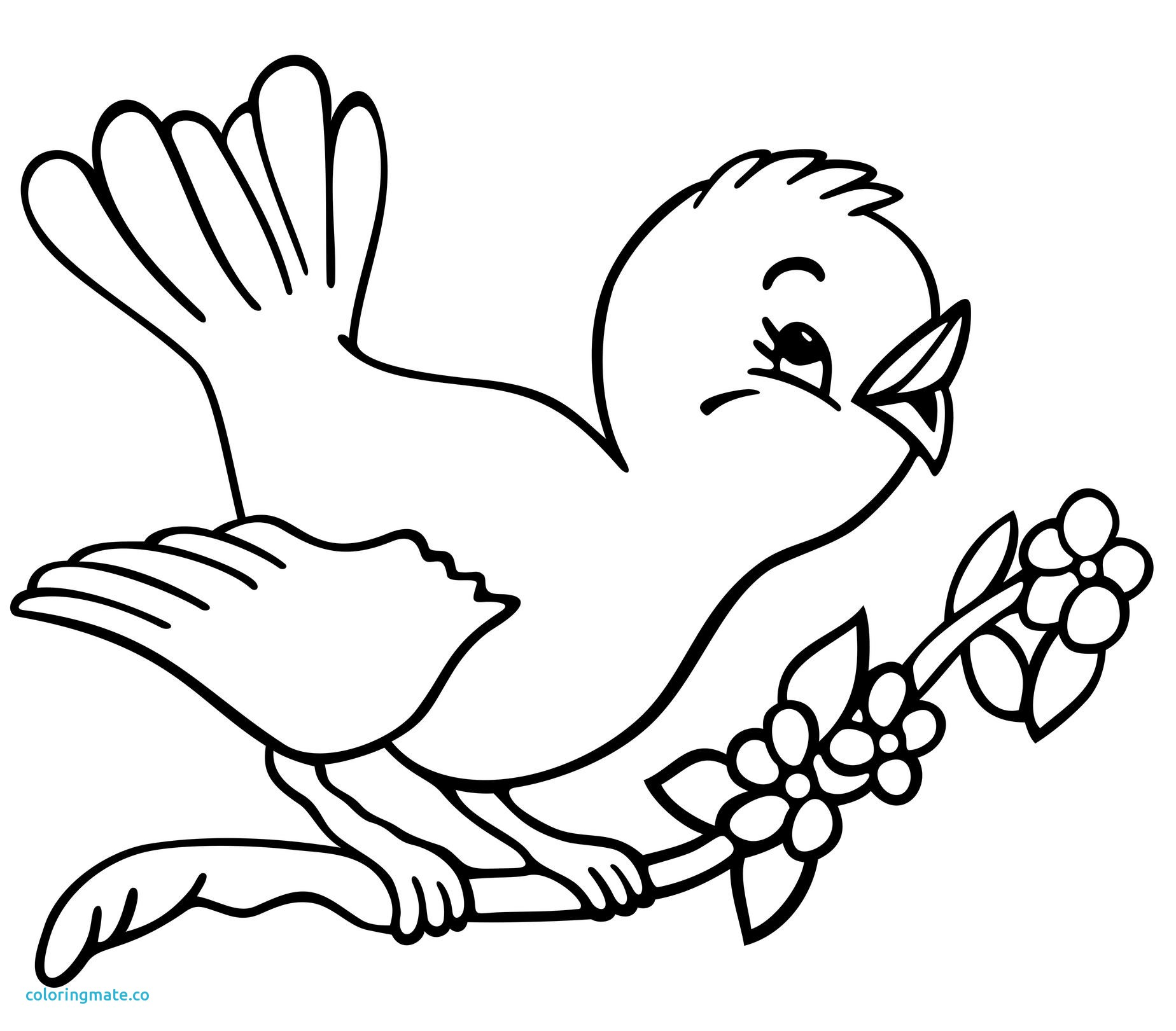 1848x1621 Parrot Coloring Pages Unique Birds Coloring Pages To Knowing