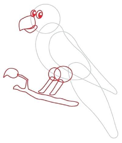 400x469 Parrot Drawing Transasia