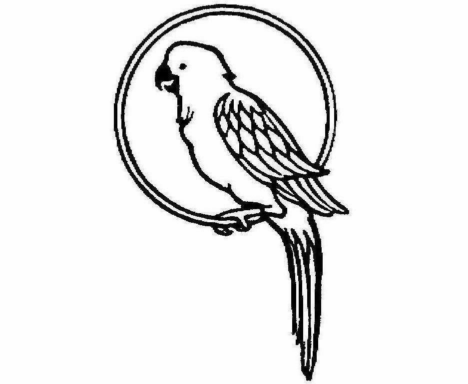 937x769 Colour Drawing Free Wallpaper Parrot Coloring Drawing Free Wallpaper