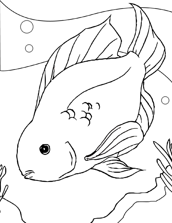 1159x1500 Fish Color Sheets Printable Printable Shelter