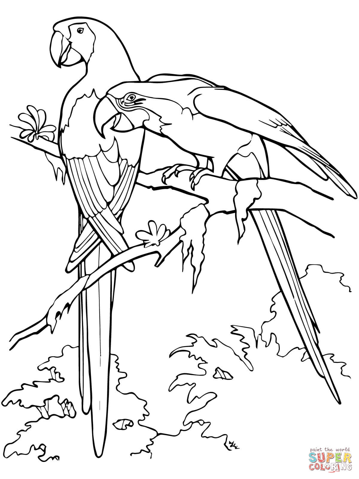 1200x1600 Parrot Coloring Pages For Adults Tribal Coloring Pages For Adults