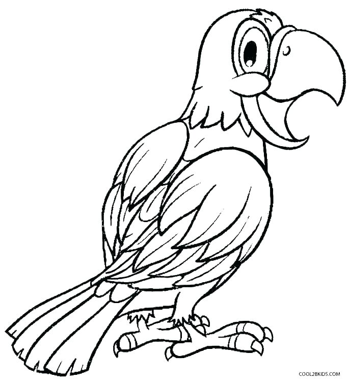 685x750 Parrot Coloring Tourist With Parrot Pirate Parrot Coloring Sheet