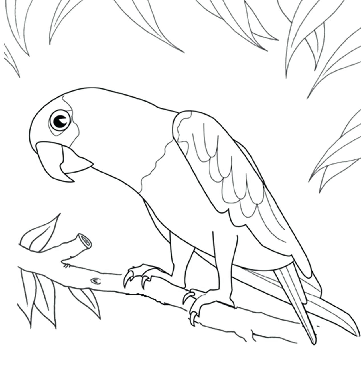 Parrot Flying Drawing at GetDrawings.com | Free for personal use ...
