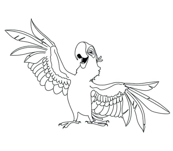 600x525 Parrot Coloring Pages Flying Parrot Coloring Pages Parrot Coloring