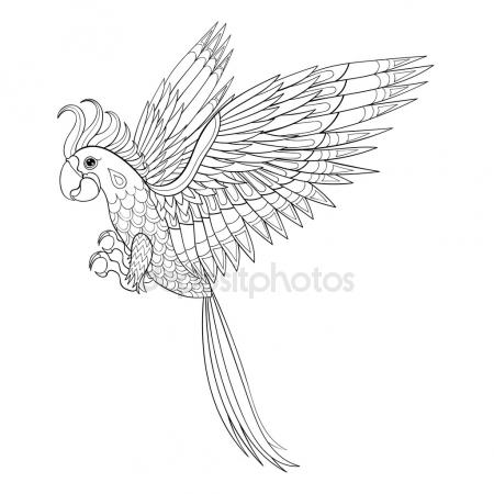 450x450 Parrot Flying Stock Vectors, Royalty Free Parrot Flying