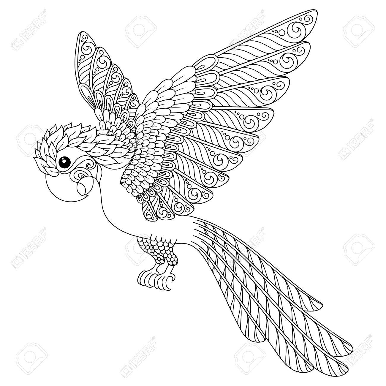1300x1300 Hand Drawn Parrot. Isolated On Transparent Background. Anti Stress