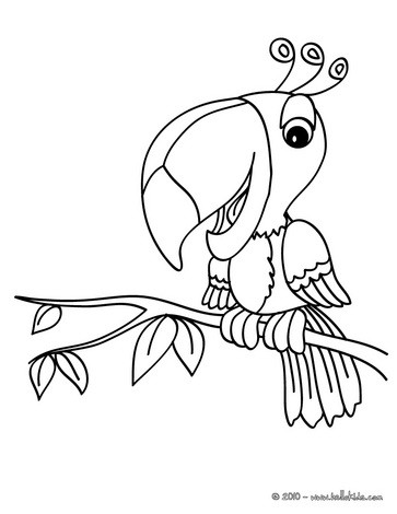 Parrot Images Drawing at GetDrawings.com | Free for personal use ...