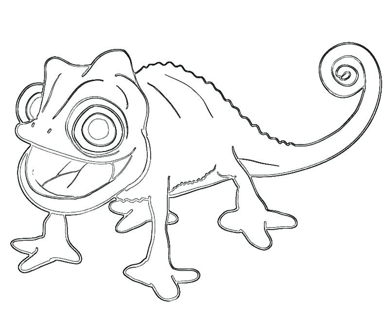 800x667 Pascal Tangled Coloring Pages And Disney
