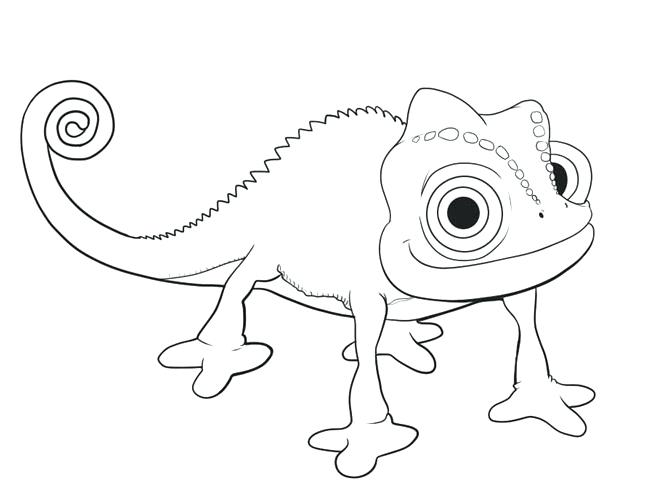 645x500 disney tangled pascal coloring pages printable me