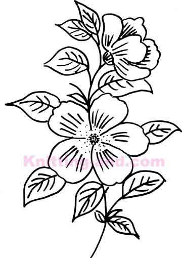 Passion Flower Line Drawing : Passion flower drawing at getdrawings free for