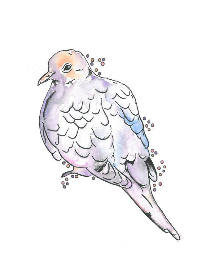 636x900 Pastel Pigeon Art Print Pastels, Illustrators And Printing