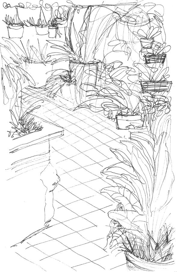 588x900 Garden Path Drawing By Elizabeth Thorstenson