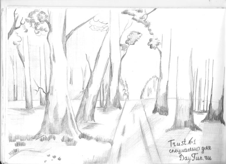 768x558 How To Draw Forest Step By Step