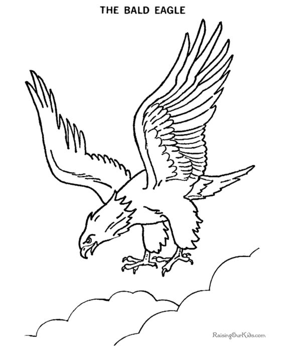 564x690 Bald eagle flying drawing Lineart Patriotic Bald