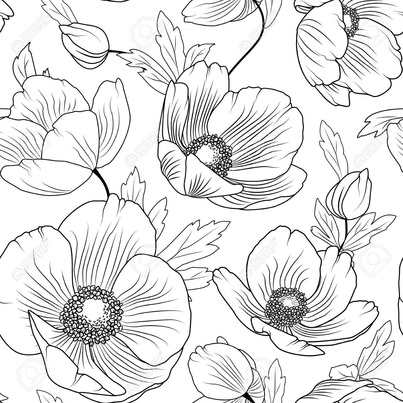 1300x1300 Poppy Flowers Buds Leaves. Seamless Floral Pattern Texture