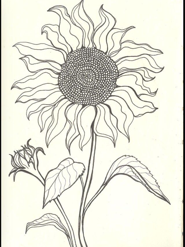 640x851 Sun Flower Tattoo Idea Pattern Flower Tattoos